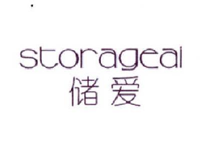 储爱 STORAGEAI