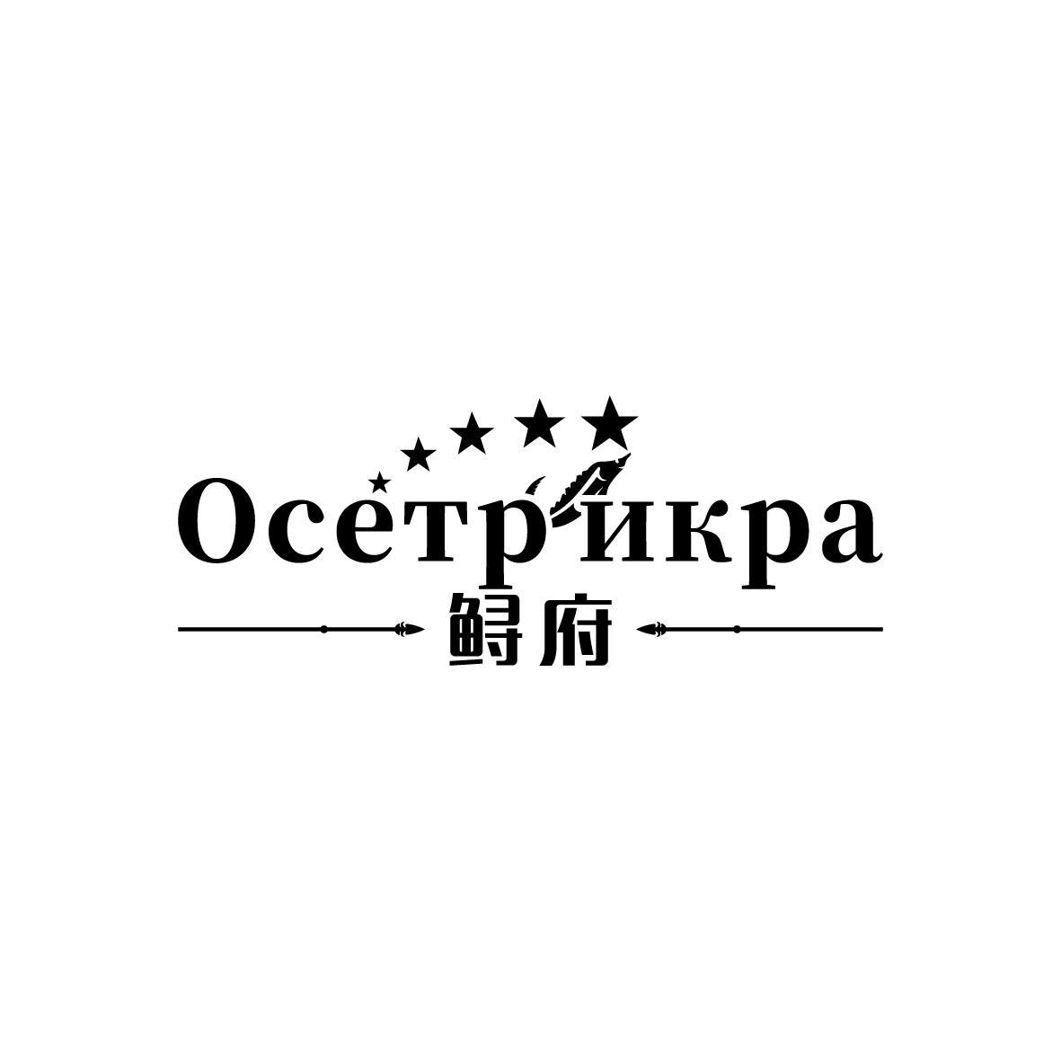 鲟府 OCETP NKPA